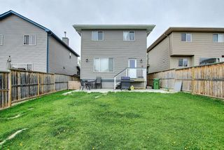 Photo 35: 2350 Sagewood Crescent SW: Airdrie Detached for sale : MLS®# A1117876