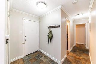 Photo 4: 104 10165 113 Street in Edmonton: Zone 12 Condo for sale : MLS®# E4253284