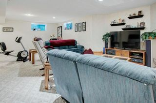 Photo 22: 227 Canals Boulevard SW: Airdrie Detached for sale : MLS®# A1091783