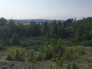 Photo 5: LOT 100ABC WEST PETPESWICK Road in West Petpeswick: 35-Halifax County East Vacant Land for sale (Halifax-Dartmouth)  : MLS®# 5158270