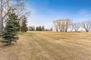 Photo 19: 10744 Mapleshire Crescent SE in Calgary: Maple Ridge Detached for sale : MLS®# A1094233
