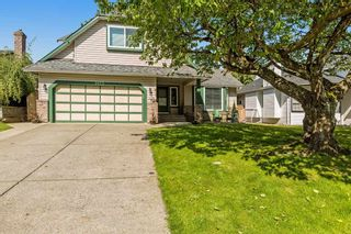 Photo 4: 9173 211B Street in Langley: Walnut Grove House for sale : MLS®# R2169622