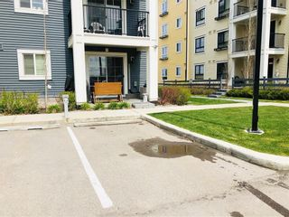 Photo 19: 2105 279 COPPERPOND Common SE in Calgary: Copperfield Apartment for sale : MLS®# C4296739