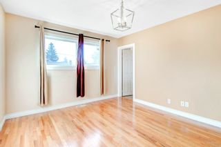 Photo 18:  in Edmonton: Zone 22 House for sale : MLS®# E4260068