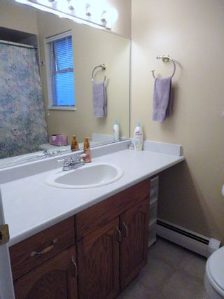 Photo 13: 9168 160A STREET in MAPLE GLEN: House for sale