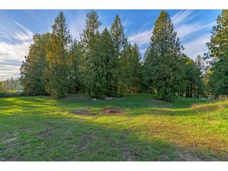 Photo 39: 1395 242ND Street in Langley: Otter District House for sale : MLS®# R2620231