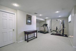 Photo 24: 8230 Saddleridge Drive NE in Calgary: Saddle Ridge Detached for sale : MLS®# A1085120