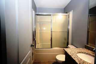 Photo 25: 19031 50 Avenue in Edmonton: Zone 20 House for sale : MLS®# E4262476