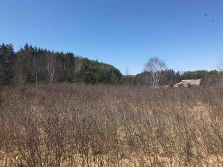 Photo 1: 11574 Highway 7 in Lake Charlotte: 35-Halifax County East Vacant Land for sale (Halifax-Dartmouth)  : MLS®# 201927372