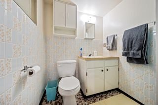 Photo 17: 3320 Dover Ridge Drive SE in Calgary: Dover Detached for sale : MLS®# A1141061