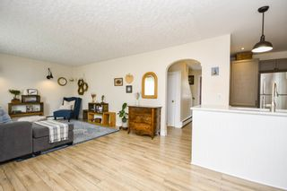 Photo 3: 8 Murray Street in Dartmouth: 10-Dartmouth Downtown To Burnside Residential for sale (Halifax-Dartmouth)  : MLS®# 202118815