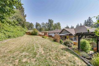 "Photo 19: 22777 HOLYROOD Avenue in Maple Ridge: East Central House for sale in ""GREYSTONE"" : MLS®# R2324417"