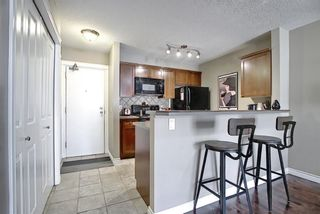 Photo 12: 306 420 3 Avenue NE in Calgary: Crescent Heights Apartment for sale : MLS®# A1105817