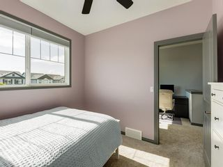 Photo 26: 258 NOLAN HILL Drive NW in Calgary: Nolan Hill Detached for sale : MLS®# A1018537