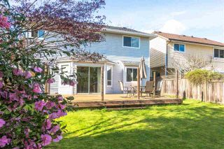 Photo 16: 3445 MANNING Place in North Vancouver: Roche Point House for sale : MLS®# R2161710