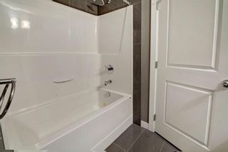 Photo 15: 2117 240 Skyview Ranch Road NE in Calgary: Skyview Ranch Apartment for sale : MLS®# A1118001