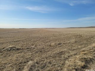Photo 8: 1,118 Acres RM Mountain View #318 in Mountain View: Farm for sale (Mountain View Rm No. 318)  : MLS®# SK837300