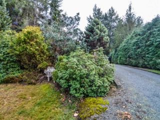 Photo 49: 4200 Forfar Rd in CAMPBELL RIVER: CR Campbell River South House for sale (Campbell River)  : MLS®# 774200