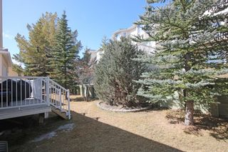 Photo 28: 8 Scimitar Circle NW in Calgary: Scenic Acres Detached for sale : MLS®# A1091817