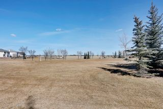 Photo 21: 168 Chaparral Common SE in Calgary: House for sale