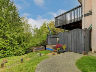 Photo 36: 3908 Lianne Pl in : SW Strawberry Vale House for sale (Saanich West)  : MLS®# 875878