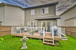 Photo 5: 32 SKYVIEW SPRINGS Gardens NE in Calgary: Skyview Ranch Detached for sale : MLS®# A1118652