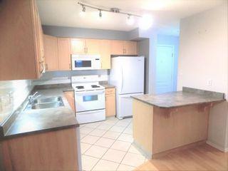 Photo 7: 104 8909 100 Street in Edmonton: Zone 15 Condo for sale : MLS®# E4246923
