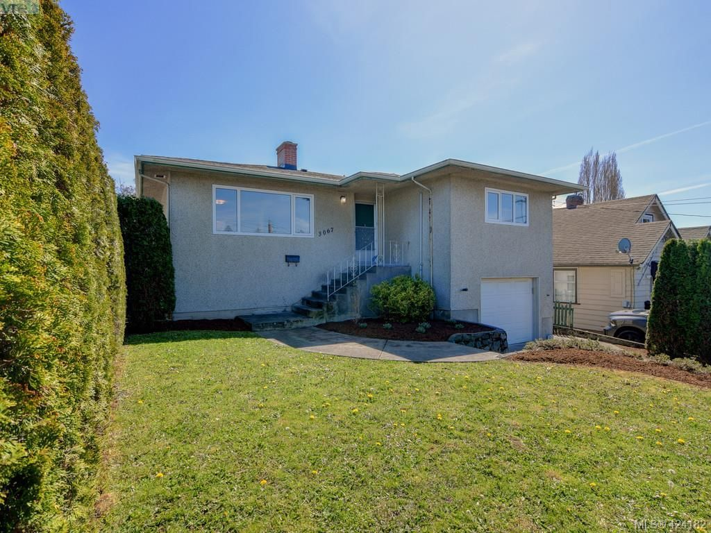 Main Photo: 3067 Albina St in VICTORIA: SW Gorge House for sale (Saanich West)  : MLS®# 837748