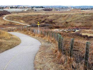 Photo 45: 103 Beddington Way NE in Calgary: Beddington Heights Detached for sale : MLS®# A1099388
