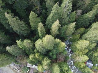 Photo 7: Lot 7 COLDWELL Beach in North Vancouver: Indian Arm House for sale : MLS®# R2559011