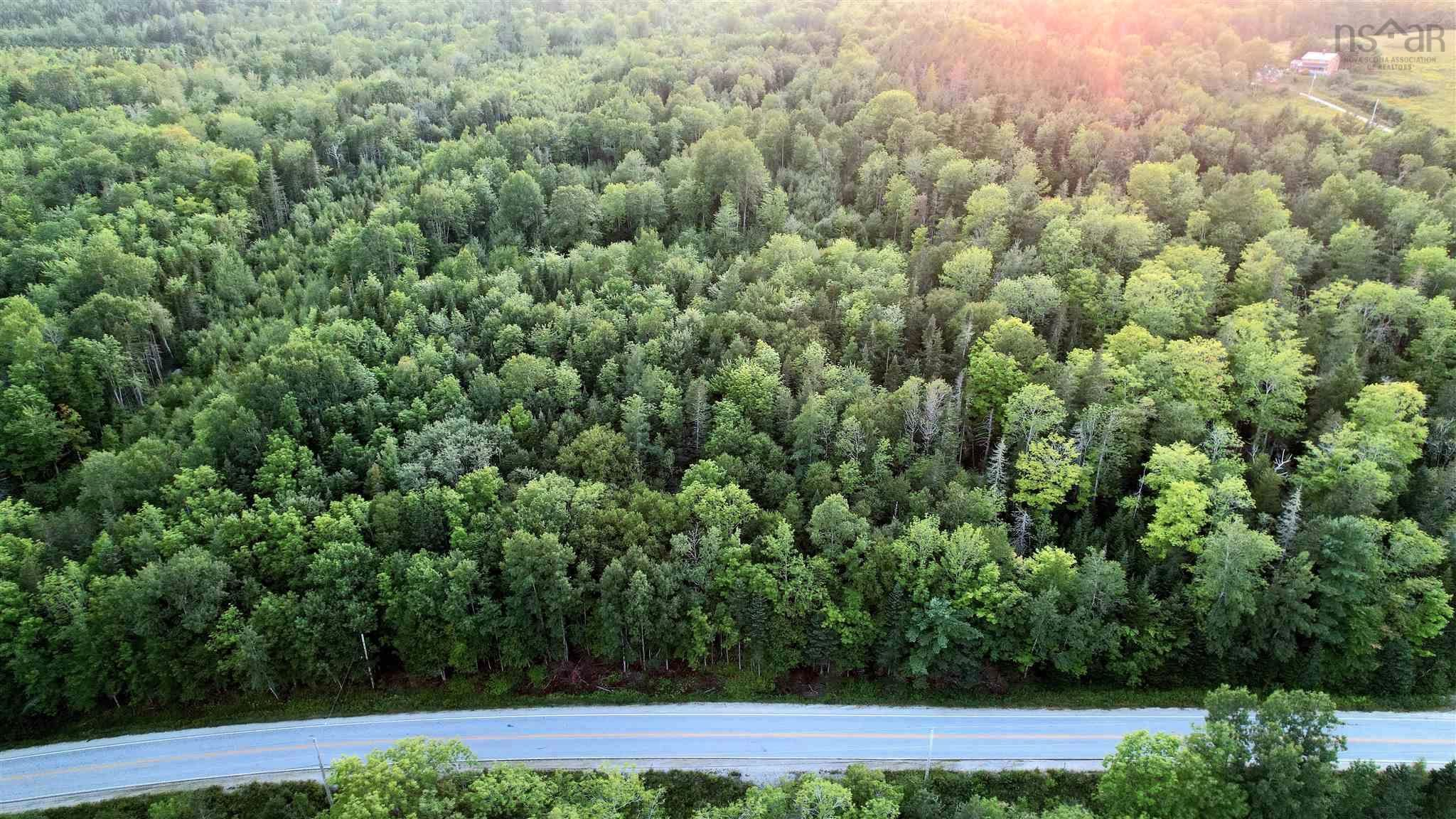 Photo 2: Photos: HWY 12 in New Ross: 405-Lunenburg County Vacant Land for sale (South Shore)  : MLS®# 202121133