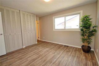 Photo 11: 41 Woodydell Avenue in Winnipeg: Meadowood Residential for sale (2E)  : MLS®# 1908712