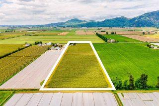 Photo 3: 3500 INTERPROVINCIAL Highway in Abbotsford: Sumas Prairie Agri-Business for sale : MLS®# C8038192