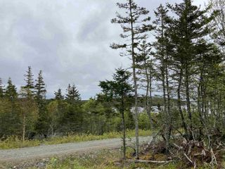 Photo 7: Lot 102 Point Road in Clam Bay: 35-Halifax County East Vacant Land for sale (Halifax-Dartmouth)  : MLS®# 202116103