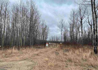 Photo 1: : Rural Westlock County Rural Land/Vacant Lot for sale : MLS®# E4241457