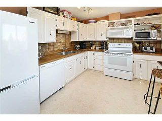 Photo 11: 120 ABOYNE Place NE in CALGARY: Abbeydale Residential Attached for sale (Calgary)  : MLS®# C3629210