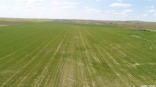 Photo 10: Central Butte - Mackow Land in Enfield: Farm for sale (Enfield Rm No. 194)  : MLS®# SK862931