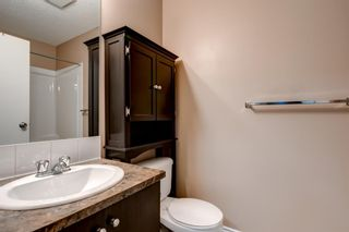Photo 17: 2308 73 Erin Woods Court SE in Calgary: Erin Woods Apartment for sale : MLS®# A1061883