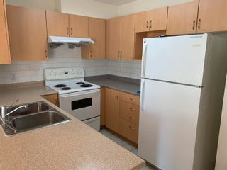 Photo 2: 206 5438 RUPERT Street in Vancouver: Collingwood VE Condo for sale (Vancouver East)  : MLS®# R2614498