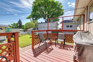 Photo 12: 306 Ashley Crescent SE in Calgary: Acadia Detached for sale : MLS®# A1120669