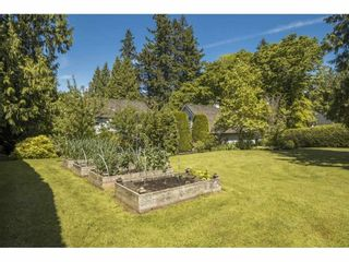 """Photo 36: 17332 26A Avenue in Surrey: Grandview Surrey House for sale in """"Country Woods"""" (South Surrey White Rock)  : MLS®# R2557328"""