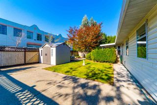 Photo 17: 12051 85A AVENUE in Surrey: Queen Mary Park Surrey House for sale : MLS®# R2506865
