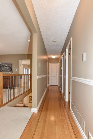 Photo 25: 8335 NELSON Avenue in Burnaby: South Slope House for sale (Burnaby South)  : MLS®# R2550990