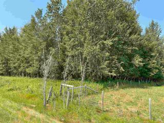 Photo 4: RGE RD 223 Twp Rd 594: Rural Thorhild County Rural Land/Vacant Lot for sale : MLS®# E4256609