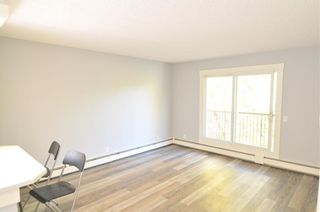 Photo 5: 403 828 4A Street NE in Calgary: Renfrew Apartment for sale : MLS®# C4205674