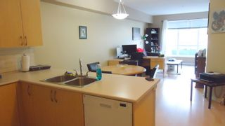 """Photo 5: 227 40437 TANTALUS Road in Squamish: Garibaldi Estates Condo for sale in """"Spectacle"""" : MLS®# R2114587"""