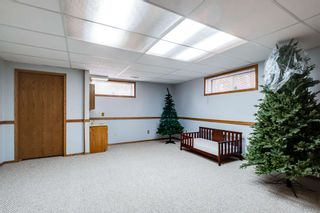 Photo 38: 9924 184 Street in Edmonton: Zone 20 House for sale : MLS®# E4247371