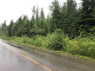 Photo 4: Lot #2 Eagle Bay Road: Eagle Bay Vacant Land for sale (Shuswap Lake)  : MLS®# 10187525