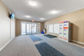 Photo 25: 319 11804 22 Avenue in Edmonton: Zone 55 Condo for sale : MLS®# E4240649