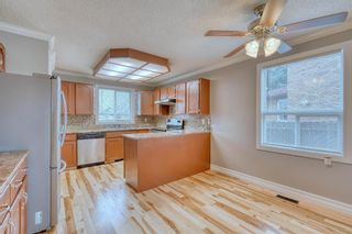 Photo 31: 355 Whitman Place NE in Calgary: Whitehorn Detached for sale : MLS®# A1046651